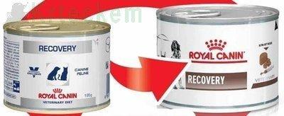 ROYAL CANIN Recovery 12x195g konzerva