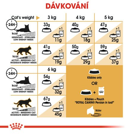 ROYAL CANIN Persian Adult  4kg